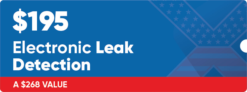 $195 Electronic Leak Detection Coupon