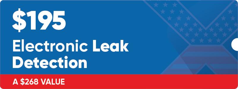 $195 Electronic Leak Detection Coupon